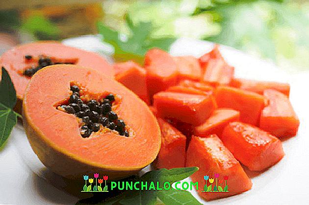 mangia semi di papaia per perdere peso