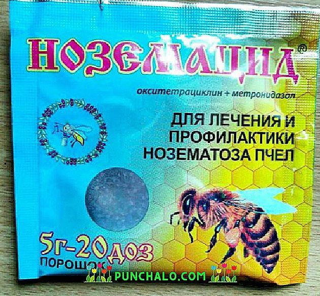 paraziták a méhek számára