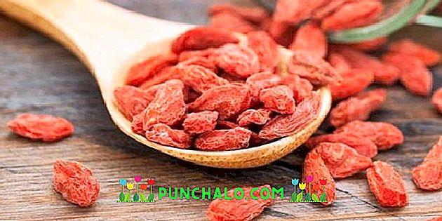 használja a goji bogyókat fogyás testzsír-veszteség mértéke