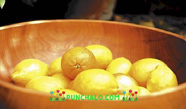 hogyan kell használni a fagyasztott citromot a fogyáshoz remix