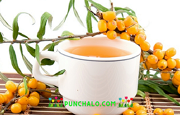 kokias arbatas gerti sergant hipertenzija