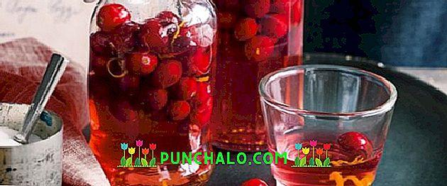 alkoholio gudobelių tinktūra nuo hipertenzijos)