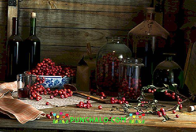 vörösáfonya látásra)